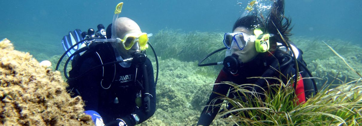 diving-e-snorkeling